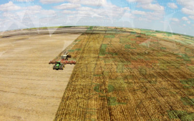 Three ways Farmers Edge can help you put Big Data to use this year