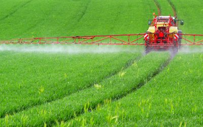 How to Effectively Apply Fertilizer This Spring