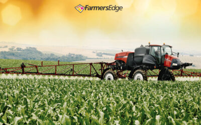 3 Factors to Consider When Applying Herbicides in Drought Conditions