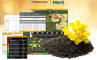 Farmers Edge and Merit Functional Foods to Launch Pilot Program for Plant-Based Proteins